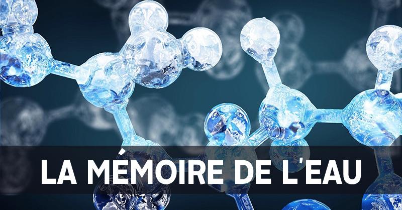 """Résultat de recherche d'images pour """"l'eau a une mémoire"""""""